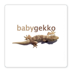 Gekko Web Builder Hosting